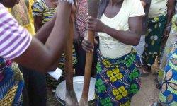 Méthode d'élaboration du beurre de karité au nord Bénin (Dépt de l'Atakora)